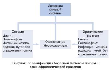 Классификация инфекций мочевыводящих путей у детей и особенности форм