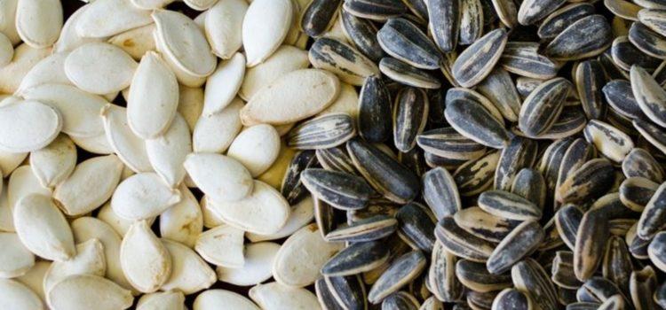Можно ли семечки при грудном вскармливании: польза и вред продукта