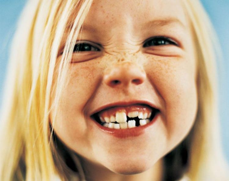 Сроки прорезывания коренных зубов у детей таблица