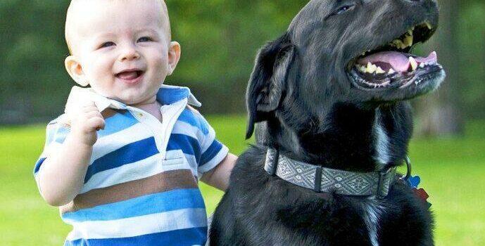 Мальчик и черная собака