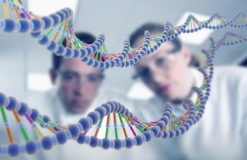 Цепочки ДНК