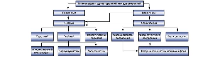 Классификация пиелонефрита у детей и возможные осложнения