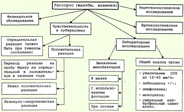 Схема диагностики туберкулеза у детей