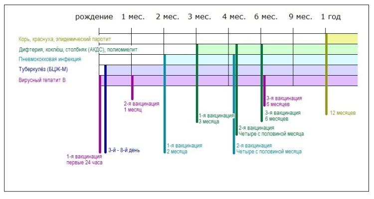 График оптимальных сроков для каждой из прививок для детей до 1 года