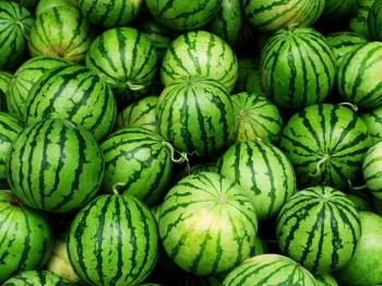 Советы по выбору арбуза, который можно есть при грудном вскармливании