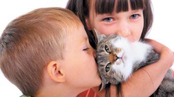 Стригущий лишай у детей: фото, симптомы и лечение, профилактика