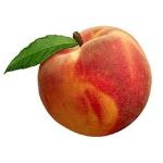 Персики при грудном вскармливании в первый месяц: можно или нельзя?