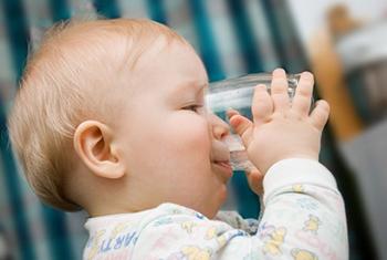 Укропная вода - показания к применению у новорожденных и грудничков